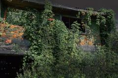 老被烧的房子长满与植物在被月光照亮夜 恐怖 黑眼睛 免版税库存照片