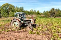 老被转动的农业拖拉机使用在土豆领域 库存照片