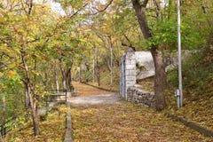 老被铺的路通过森林Pyatigorsk,俄罗斯 库存照片