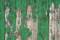 老被风化的自然木背景篱芭片段纹理 土气木登岸的纹理绿色绘画 钞票 库存照片