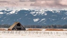 老被风化的谷仓在有雪和篱芭的农村爱达荷 免版税库存图片