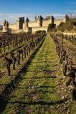 老被围住的城堡和vinyards 卡尔卡松 法国 免版税库存照片