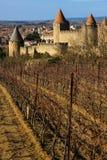 老被围住的城堡和vinyards 卡尔卡松 法国 免版税库存图片