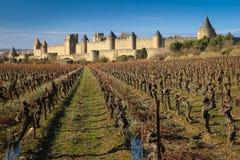 老被围住的城堡和vinyards 卡尔卡松 法国 图库摄影