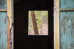老被破坏的木旅游客舱 图库摄影