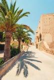 老西班牙城堡下棵棕榈树和一条狭窄的街道 免版税图库摄影