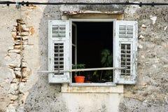 老视窗 免版税图库摄影