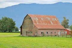 老谷仓和放牧地带 库存照片