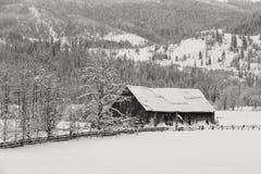 老谷仓在多雪的牧场地 免版税库存图片