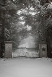 老车道门在冬天 免版税库存照片