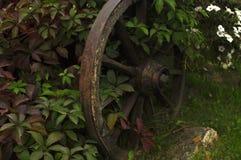 老轮子 库存图片