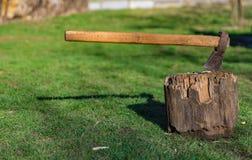 老轴树桩绿色领域 免版税库存图片