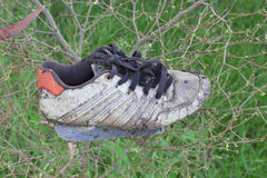 老运动鞋 免版税库存照片