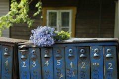 老邮箱和狂放的蓝色花 库存照片