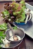 老金属碗、盘子和厨房器物有沙拉叶子的  库存图片