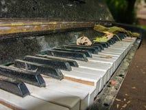 老钢琴 免版税库存图片