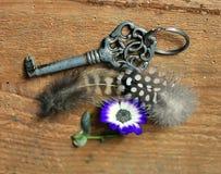 老钥匙、花和羽毛 免版税库存图片
