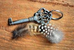 老钥匙和羽毛 免版税库存照片