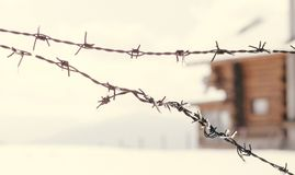 老铁丝网篱芭在冬天 库存照片