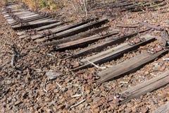老铁路、铁路,铁路轨道,被放弃的,被毁坏的和长满的木头 免版税库存图片
