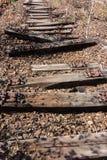 老铁路、铁路,铁路轨道,被放弃的,被毁坏的和长满的木头 库存照片