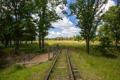 老铁路在夏天森林里 免版税图库摄影