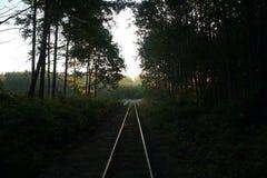 老铁路在瑞典 库存照片