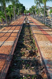 老铁路线被变换成在棕榈树之间的一条走的边路 免版税库存图片