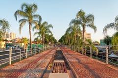 老铁路线被变换成在棕榈树和有些长凳之间的一条走的边路对s 图库摄影