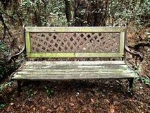 老铁&长木凳在森林 图库摄影