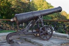 老铸铁大炮 免版税库存图片