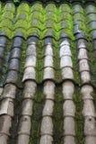 老铺磁砖的屋顶 免版税图库摄影