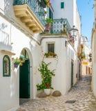 老镇在奥特朗托,莱切,普利亚,意大利省Salento半岛的 免版税图库摄影