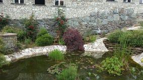 老镇玫瑰池塘 库存图片