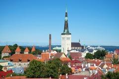 老镇的风景每在城市塔林,爱沙尼亚的威严的古迹的晴天 免版税库存照片