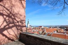 老镇,塔林,爱沙尼亚风景看法  免版税库存图片