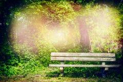 老长凳在夏天公园或森林 免版税库存照片