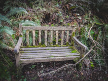 老长凳在森林/公园里 免版税库存图片