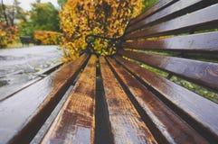 老长木凳在公园在秋天 自然葡萄酒秋天背景 免版税库存照片