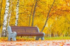 老长木凳在城市公园 自然葡萄酒秋天背景 免版税库存图片