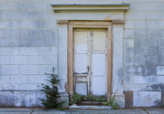 老门和一棵小树 免版税库存照片