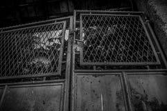 老门 老铁门作为背景 一张照片 免版税库存图片
