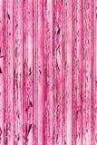 老难看的东西和被风化的桃红色木墙壁板条构造背景 免版税图库摄影