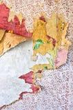 老难看的东西在一个被破坏的房子里撕碎了墙纸 图库摄影