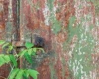 老难看的东西崩裂了在金属墙壁纹理的油漆 库存图片