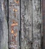 老难看的东西木表面纹理崩裂了和削皮油漆 库存照片