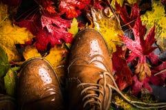 老鞋子和湿秋叶 免版税图库摄影