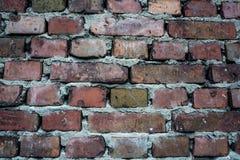 老顶楼都市砖墙 库存照片