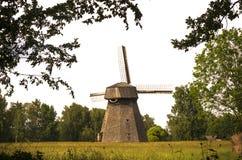 老风车在农场,立陶宛 免版税库存照片