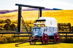 老马支架在大农场 库存照片